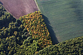 Aerial photo of diverse land useage, agricultural forest and fields, Lower Saxony, Germany