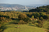 Aerial view of Hildesheim and surrounding forest and hills in the Autumn, Lower Saxony, Germany