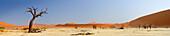 Panorama mit abgestorbene Bäume und rote Sanddünen, Sossusvlei, Namib Naukluft National Park, Namibwüste, Namib, Namibia