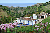 House in remote landscape at the north coast, Island of Santa Maria, Azores, Portugal, Europe