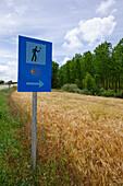Sign post at a field, Province of Burgos, Old Castile, Castile-Leon, Castilla y Leon, Northern Spain, Spain, Europe