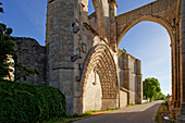 Gate at ruins of the monastery San Anton in the sunlight, Province of Burgos, Old Castile, Castile-Leon, Castilla y Leon, Northern Spain, Spain, Europe