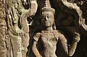Angkor (Cambodia): apsara relief at the Ta Prohm