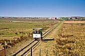 Horse-driven railway on the island of Spiekeroog, Germany, Europe