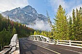 Bridge over the Yoho River in the Yoho National Park, British Columbia, Canada