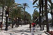 Explanada de Espana, Alicante, Province Alicante, Spain