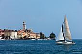 Sailing boat, Salo, Lake Garda, Lombardy, Italy