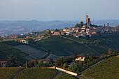 Serralunga d' Alba, Langhe, Piedmont, Italy