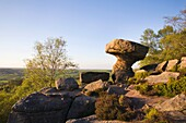 The Druids Writing Desk Brimham Rocks North Yorkshire England