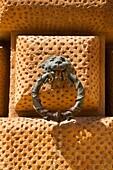 Lion Ornament Detail at Palacio de Carlos V Alhambra Palace Granada Spain