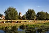 Water Meadows and All Saints Church Sudbury Suffolk England