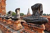 Row of headless Buddha figures in Wat Chai Wattanaram, ruined Buddhist temple in Ayutthaya, Thailand