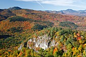 Autumn foliage from the Boulder Loop Trail This trail is located along the Kancamagus Highway route 112, which is one of New England's scenic byways in the White Mountains, New Hampshire USA Mount Chocorua is in the distance