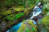 Avalanch Creek gorge in Glacier National Park