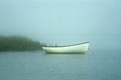 Rustic row boat and sea grass on misty morning Cape Cod