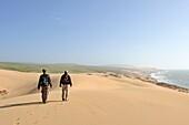 dunes around Tamri on Atlantic Coast, between Agadir and Essaouira, Morocco, North Africa