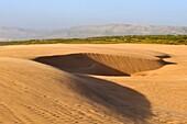around Tamri on Atlantic Coast, between Agadir and Essaouira, Morocco, North Africa