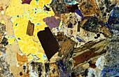 Biotitic granite Igneous rocks Pyrenees Spain Petrograhic microscope