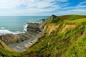 St Catherine's Tor over looking Speke's Mill Mouth on the North Devon Heritage Coast near Hartland Quay, Devon, England, United Kingdom Now mostly eroded by the sea, the Tor is said to have been the site of St Catherine's Chapel from which it derived it'
