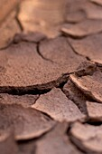 Baked dry earth
