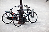 Two dutch bicyles, upright bicycles leaning against a lamppost, Amsterdam, Netherlands