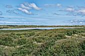 Lake Hammer, North Sea Island Juist, East Frisia, Lower Saxony, Germany