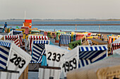 Canopied Beach Chairs on the beach, North Sea Spa Resort Langeoog, East Frisia, Lower Saxony, Germany