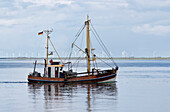 Fishing boat, Cutter, North Sea, at Dagebuell, Schleswig-Holstein, Germany