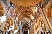 Vault of the ceiling of the Seeon Abbey, Seeon, Seeon-Seebruck, Chiemsee, Chiemgau, Upper Bavaria, Bavaria, Germany