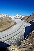 Glacier Grosser Aletschgletscher with Jungfrau, Moench and Eiger, Eggishorn, UNESCO World Heritage Site Swiss Alps Jungfrau - Aletsch, Bernese Alps, Valais, Switzerland, Europe