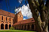 View at Chorin monastery, cistercian monastery, Chorin, Uckermark, Brandenburg, Germany, Europe