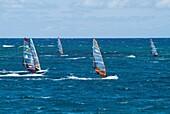 Playa de las Cucharas COSTA TEGUISE LANZAROTE Group of Windsurfers windsurfing racing