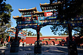 Morning sport in Jingshan Park at the northern gate, group playing badminton with their feet, exercise early in the morning, Beijing, People's Republic of Chinag
