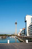 Media Harbour and television tower in the sunlight, Düsseldorf, Duesseldorf, North Rhine-Westphalia, Germany, Europe