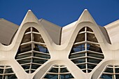 Architectural detail of the Science Museum, City of Arts and Sciences, Valencia, Spain