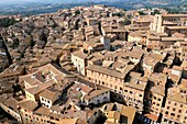Sienna, Tuscany, Italy View across the mediaeval city rooftops terracotta tiles from the top of the Torre del Mangia