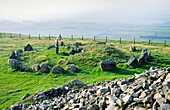 Part of the prehistoric Stone Age passage grave burial cairns site at Loughcrew The eastern group County Meath, Ireland