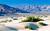 Death Valley, California, USA Sand dune in arid desert parched eroded hill landscape near Stovepipe Wells