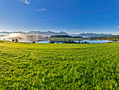 View over lake Forggensee to the alps, Allgaeu, Bavaria, Germany
