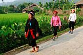 Tay women walking through village of Me, Ha Giang - near, Vietnam