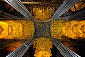 Gewölbe, Kathedrale, la Giraglia, Sevilla, Provinz Sevilla, Andalusien, Spanien, Mediterrane Länder