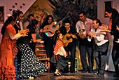 Mädchen tanzt Flamenco, Flamenco, Los Gallos, Sevilla, Provinz Sevilla, Andalusien, Spanien, Mediterrane Länder