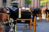 Lantern of carriage, Sevilla, Sevilla Province, Andalusia, Spain