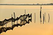 Fishing nets in twilight, Achterwasser, Krummin, Usedom, Mecklenburg-Western Pomerania, Germany