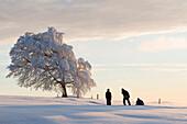 Family with sledge on mount Schauinsland, Freiburg im Breisgau, Black Forest, Baden-Wurttemberg, Germany