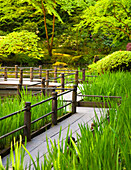Walkway in Japanese Garden, Portland, Oregon USA