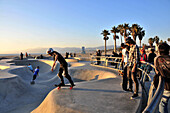 Skateboarders at Venice Beach in the evening, Santa Monica, Los Angeles, Los Angeles, California, USA, America