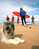 Surf instructor with dog and pupils, Escuela cantabria de surf, Playa de Somo near Santander, Cantabria, Spain
