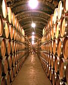 Wine barrels in the cellar of Bodega Protos, in the hill underneath Castillo Penafiel, Castile and León, Spain