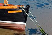 Holzboot im neuen Hafen von Portsoy, Aberdeenshire, Schottland